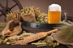 啤酒成份 免版税库存照片