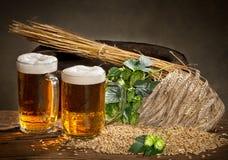 啤酒杯和蛇麻草 免版税库存图片