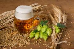 啤酒杯和蛇麻草 免版税图库摄影