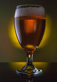 啤酒杯查出的白色 库存图片