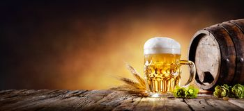 啤酒杯用麦子和蛇麻草在地窖里 免版税图库摄影