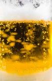 啤酒泡影关闭  库存照片