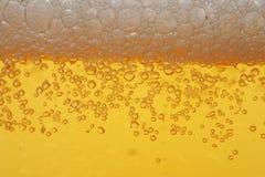 啤酒泡沫宏指令 库存图片