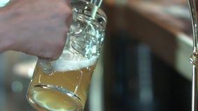 啤酒涌入了有轻拍的一个杯子 股票录像