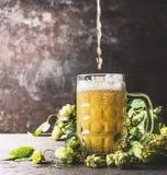 啤酒涌入在桌上的杯子用新鲜的蛇麻草在黑暗的土气墙壁背景 免版税图库摄影