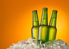 啤酒瓶三 免版税库存图片