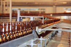 啤酒瓶传动机线路许多 免版税库存图片