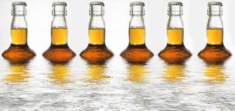 啤酒瓶反映 免版税图库摄影