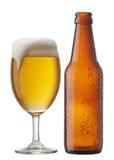 啤酒瓶 库存图片