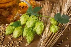 啤酒生产的原材料 图库摄影