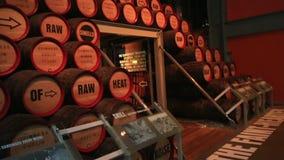 啤酒的木桶 对吉尼斯的游览 影视素材