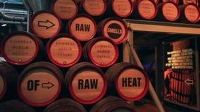 啤酒的木桶 对吉尼斯的游览 股票录像