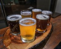 啤酒的盘子 免版税库存图片