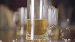 啤酒站立在酒吧特写镜头的桌上的杯 在玻璃旁边被洒的大麦种子 自然啤酒 股票录像