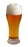 啤酒管 图库摄影