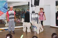 啤酒舍瓦,以色列-两个小丑,两白色长卷毛狗和孩子在观众大厅, 2015年7月25日里 图库摄影