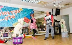 啤酒舍瓦,以色列-小丑和两白色长卷毛狗,马戏, 2015年7月25日 免版税图库摄影