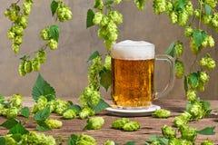 啤酒花球果树和杯啤酒 免版税库存图片