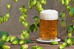 啤酒花球果树和杯啤酒 图库摄影