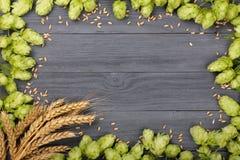 啤酒花球果树框架与麦子的耳朵的在黑木背景的 与拷贝空间的顶视图您的文本的 免版税库存图片