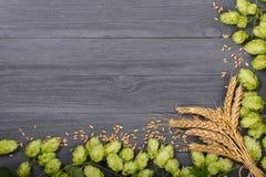 啤酒花球果树框架与麦子的耳朵的在黑木背景的 与拷贝空间的顶视图您的文本的 库存照片