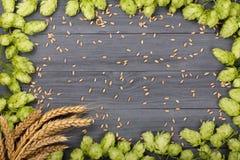 啤酒花球果树框架与麦子的耳朵的在黑木背景的 与拷贝空间的顶视图您的文本的 免版税库存照片