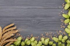 啤酒花球果树框架与麦子的耳朵的在黑木背景的 与拷贝空间的顶视图您的文本的 图库摄影