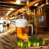 啤酒蛇麻草和大麦 免版税库存图片