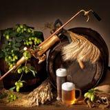 啤酒蛇麻草和大麦 库存照片