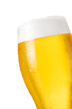 啤酒详细资料 免版税库存照片