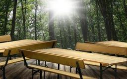 啤酒长凳集合桌和长凳与后面架靠背 免版税图库摄影