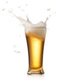 啤酒飞溅 免版税库存图片