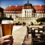 啤酒鲜美饮料 在葡萄酒生动的颜色的艺术性的神色 免版税库存图片