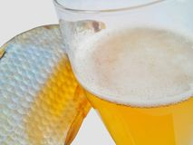 啤酒,干鱼 图库摄影