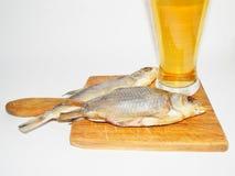 啤酒,干鱼 库存图片
