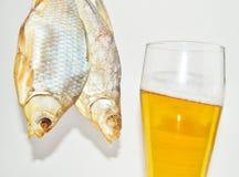 啤酒,干鱼 免版税库存照片