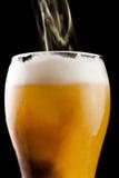 啤酒 库存图片