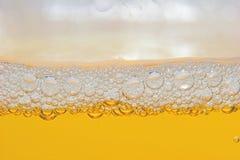 啤酒 图库摄影
