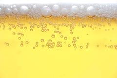 啤酒 库存照片