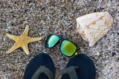 啪嗒啪嗒的响声、太阳镜有海星的和壳在海滩 顶层 库存图片