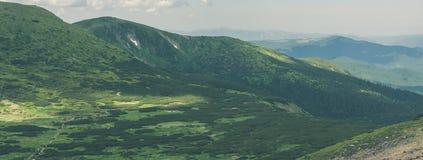 喀尔巴阡山脉全景在乌克兰 免版税库存照片
