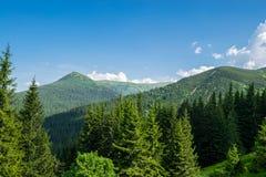 喀尔巴阡山脉峰顶在乌克兰 库存图片