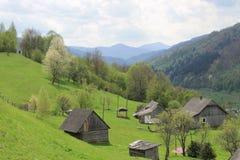 喀尔巴阡山脉的小山一个非常绿色视图在一好日子 免版税库存照片