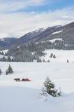 喀尔巴阡山脉的山冬天 库存图片