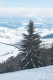 喀尔巴阡山脉的山冬天 免版税库存图片