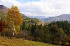 喀尔巴阡山脉的山 免版税库存照片