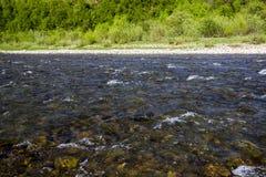 喀尔巴阡山脉的河 免版税库存图片