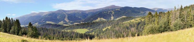 喀尔巴阡山脉的美好的全景在早晨太阳的光芒的夏天 免版税库存图片