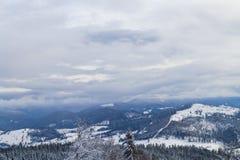 喀尔巴阡山脉的美好的冬天全景 库存图片