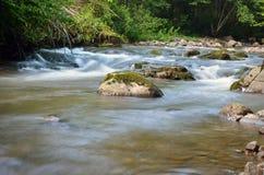 喀尔巴阡山脉的自然 库存图片